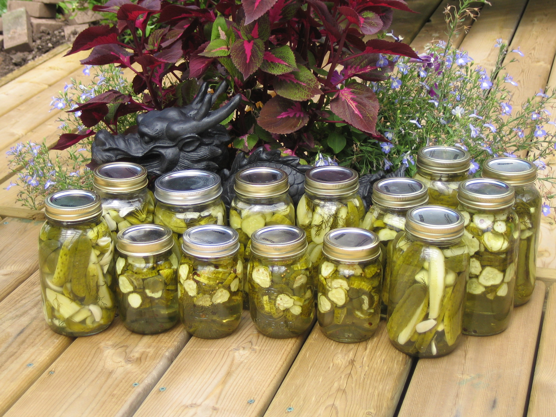 Our crop of pickles after a canning session in the summer
